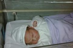 Alfie Baby